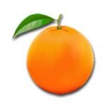 villa orange logo